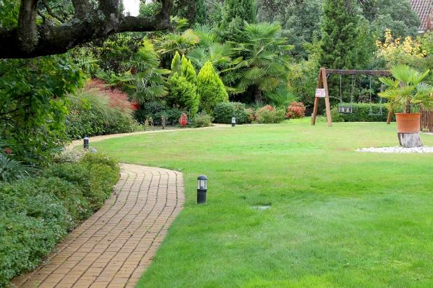 jardin-cuidado-chalet-molino-hoz-rozas-cesped